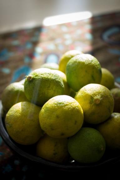 susie key limes
